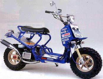D20z2001